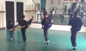 Brea Shaolin Kung Fu Kicking