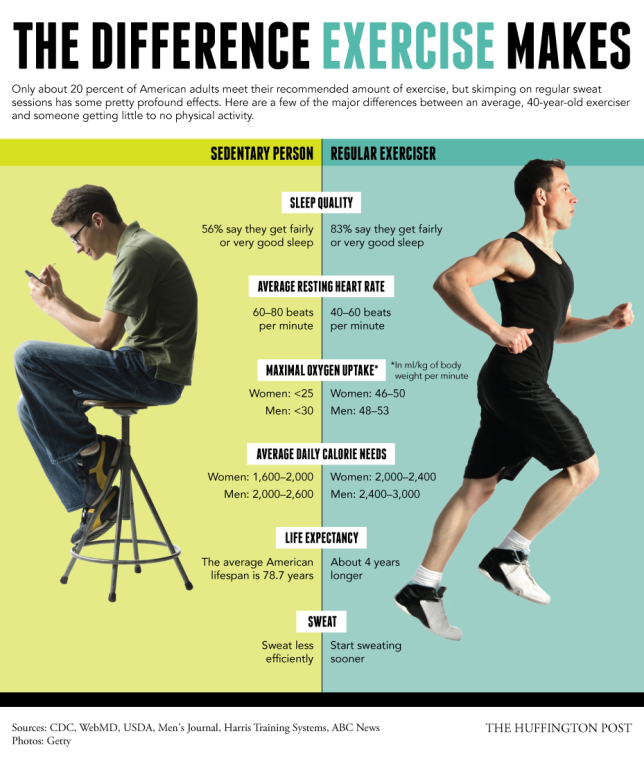 Sedentary Vs. Exercise